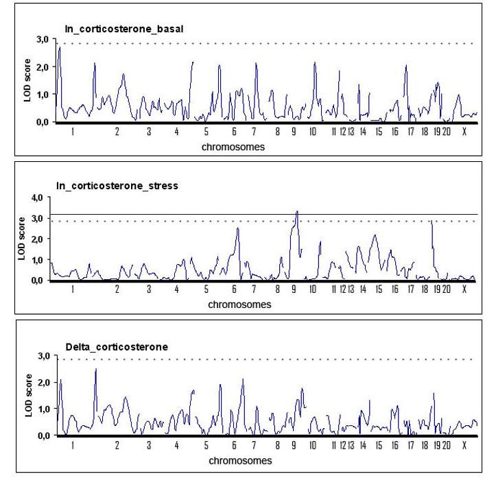 corticosterone_6m-copy