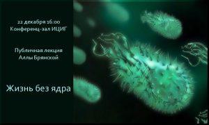 Bryansk_20111222-1024x614