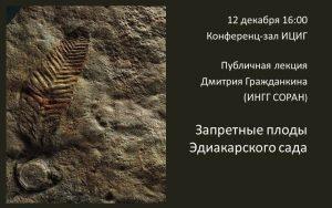 grazhdankin_20121212