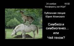 ilinsky