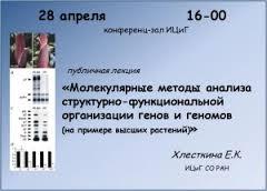 khlestkina2
