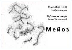 torgasheva