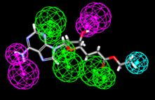 http://www.bionet.nsc.ru/files/2013/nauka/result/clip_image093.jpg