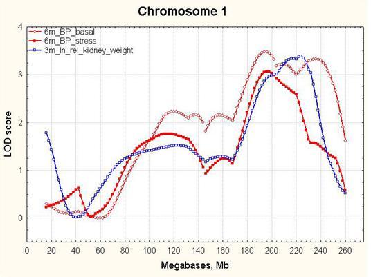 http://www.bionet.nsc.ru/files/2013/nauka/result/clip_image104.jpg
