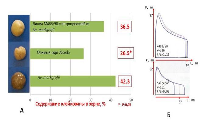 http://www.bionet.nsc.ru/files/2014/nauka/vajneyshie-rezultaty/4.jpg
