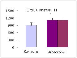http://www.bionet.nsc.ru/files/2014/nauka/vajneyshie-rezultaty/52.jpg