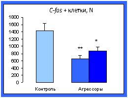 http://www.bionet.nsc.ru/files/2014/nauka/vajneyshie-rezultaty/53.jpg