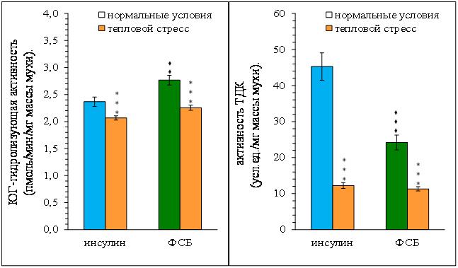 http://www.bionet.nsc.ru/files/2014/nauka/vajneyshie-rezultaty/65.jpg
