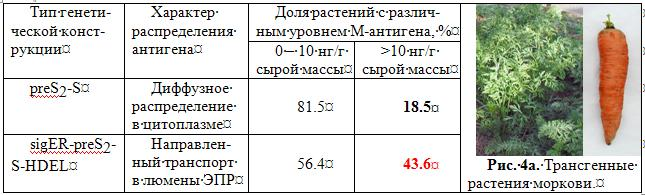http://www.bionet.nsc.ru/images/important/4a.JPG