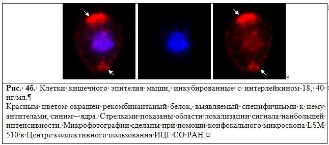 http://www.bionet.nsc.ru/images/important/4b.JPG