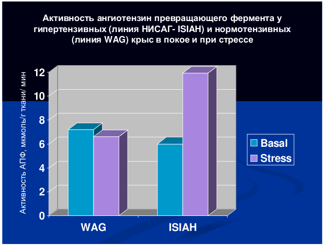 http://www.bionet.nsc.ru/images/important/54.png