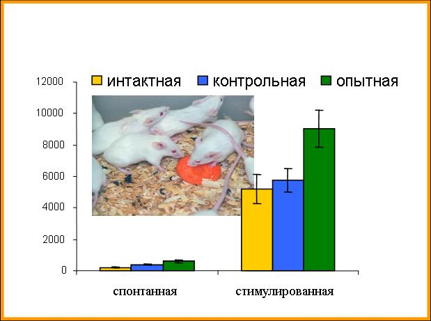http://www.bionet.nsc.ru/images/important/result2006_010.jpg